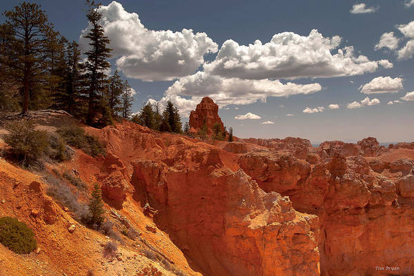 Wall Art - Photograph - Bryce Canyon Sky  by Tim Bryan