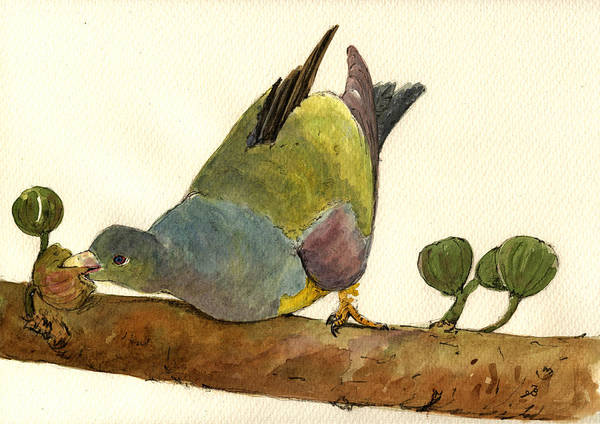 Exotic Painting - Bruce S Green Pigeon by Juan  Bosco