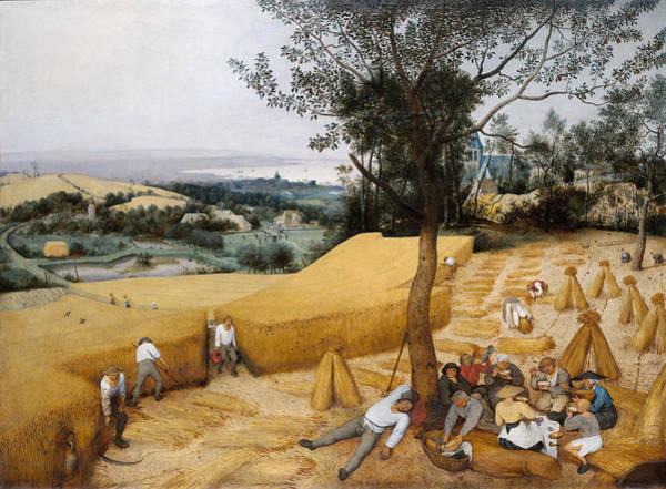 Wall Art - Painting - Bruegel Harvesters, 1565 by Granger
