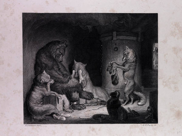 Reynard Wall Art - Drawing - Bruin In Prison by English School
