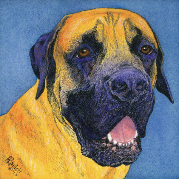 Painting - Brutus #2 by Ann Ranlett