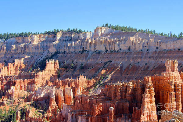 Art Print featuring the photograph Bryce Amphitheater by Jemmy Archer