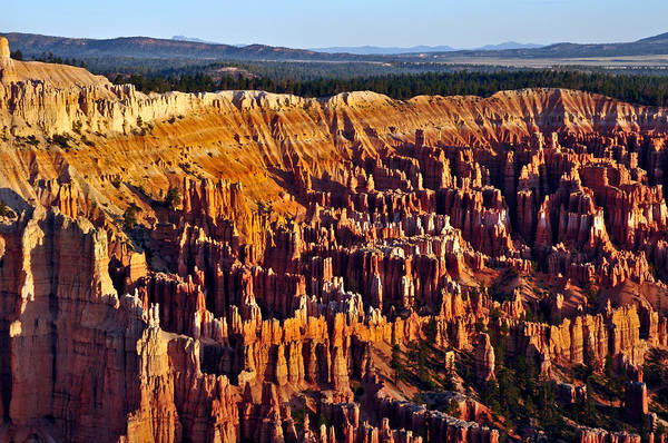 Photograph - Bryce Canyon Amphitheater  by Ginger Wakem
