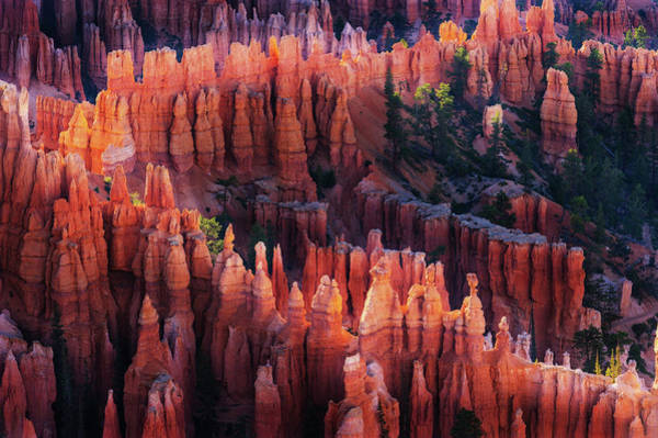Wall Art - Photograph - Bryce Canyon At Sunset by ??? / Austin