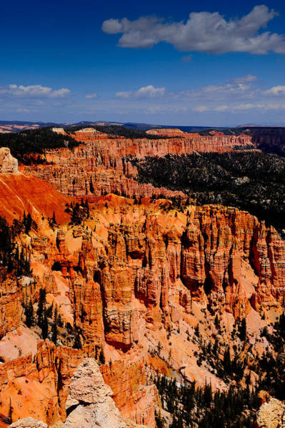 Photograph - Bryce Canyon by Don and Bonnie Fink