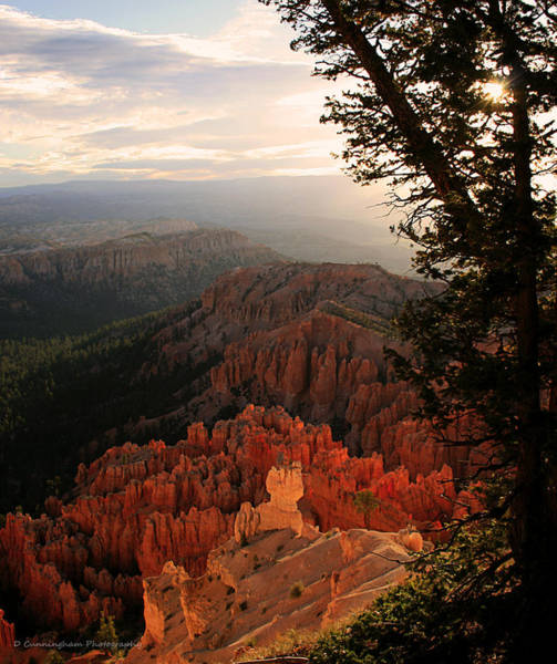 Photograph - Bryce Canyon Early Morning View by Dorothy Cunningham