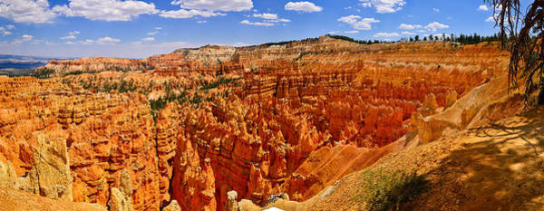 Photograph - Bryce Canyon June Panorama by Greg Norrell