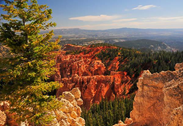 Photograph - Bryce Canyon Landscape by Ginger Wakem