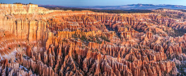 Photograph - Bryce Canyon National Park At Dawn by Pierre Leclerc Photography