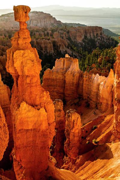Crevice Photograph - Bryce Canyon National Park, Bruce, Utah by Jolly Sienda