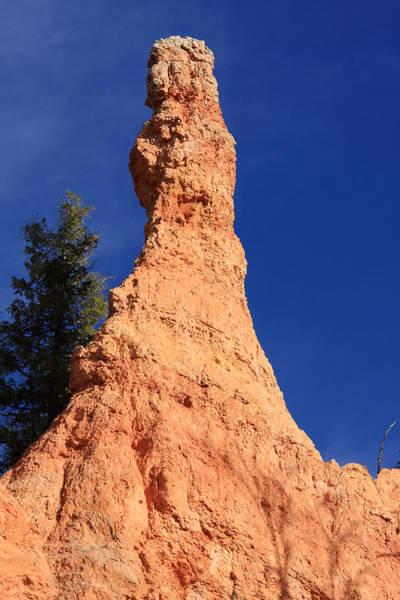 Photograph - Bryce Canyon Pillar by Aidan Moran