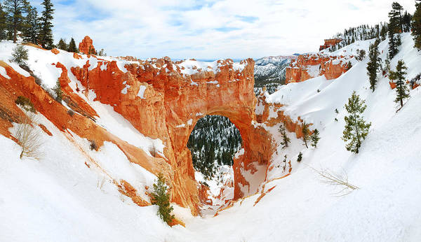 Photograph - Bryce Canyon by Songquan Deng
