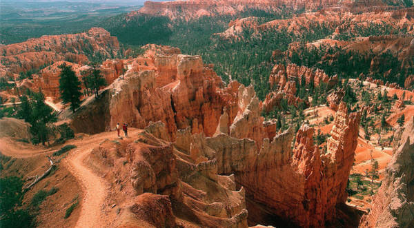 Hoodoos Photograph - Bryce Canyon by Tony Craddock/science Photo Library