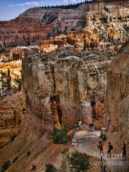 Photograph - Bryce Canyon Walking Trail by Brenda Kean