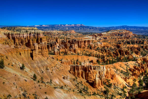 Erosion Wall Art - Photograph - Bryce's Glory by Chad Dutson