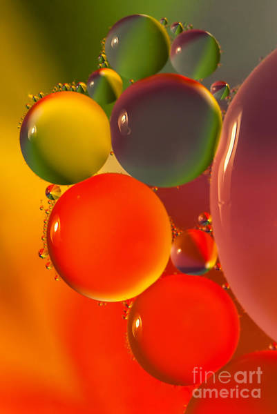 Photograph - Bubble Fest by Anthony Sacco