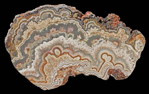 Geodes Photograph - Bubble Lace Agate by Natural History Museum, London/science Photo Library