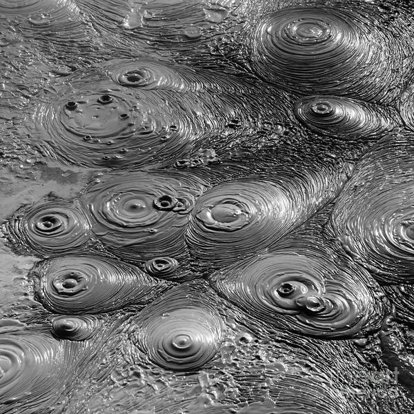 Photograph - Bubbling Mud Patterns 1 by James Brunker