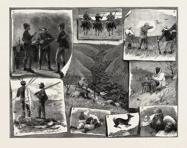 Prepare Drawing - Buck Hunting At The Cape 1. An Early Refresher. 2 by English School