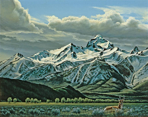 Wall Art - Painting - Buck Mountain From Antelope Flat by Paul Krapf