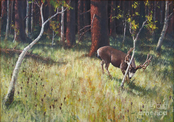 Painting - Buck Rub by Rob Corsetti