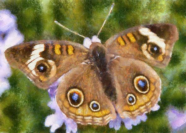 Digital Art - Buckeye Butterfly by Charmaine Zoe