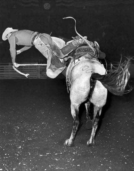 Black Buck Photograph - Bucking Bronco Departure by Underwood Archives