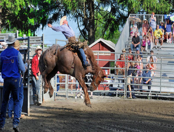 Mission Viejo Photograph - Bucking Bronco Haven  by Gary Keesler