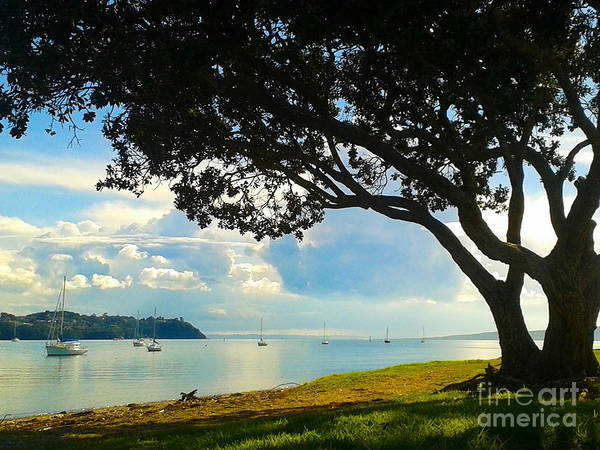 Pohutukawa Photograph - Bucklands Beach The Day Of Clouds by Gee Lyon