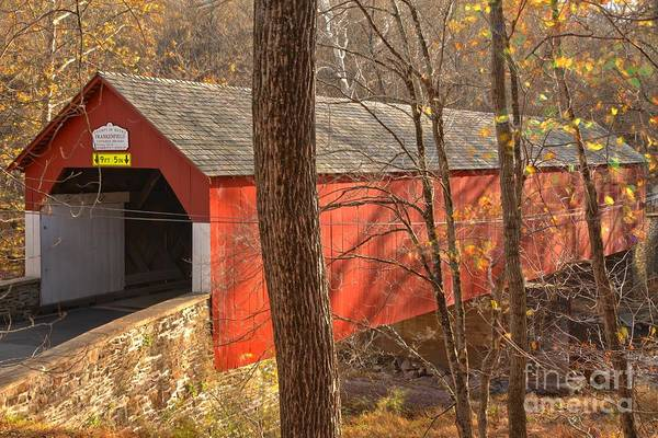 Photograph - Bucks County Frankenfield Covered Bridge by Adam Jewell