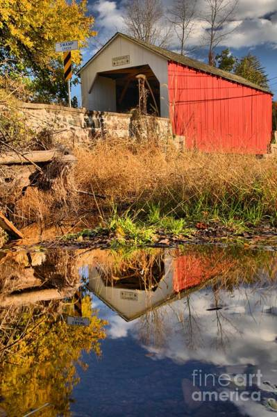 Photograph - Bucks County Swamp Creek Reflections by Adam Jewell