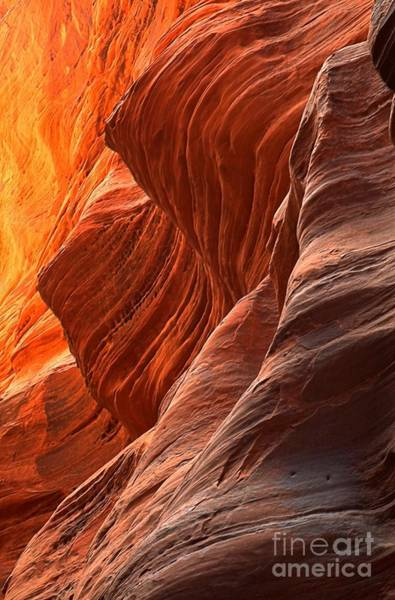 Photograph - Buckskin Gulch Slot Canyon Fire by Adam Jewell