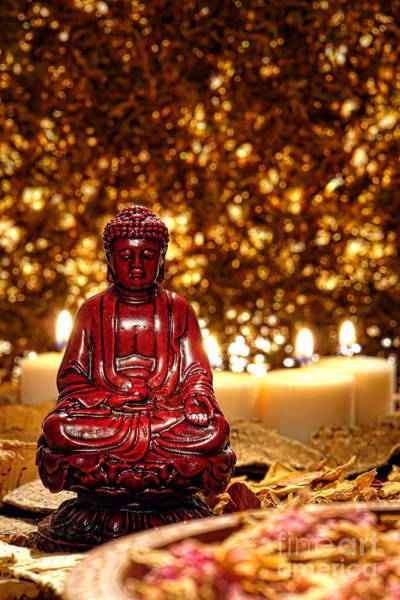 Photograph - Buddha And Candles by Olivier Le Queinec