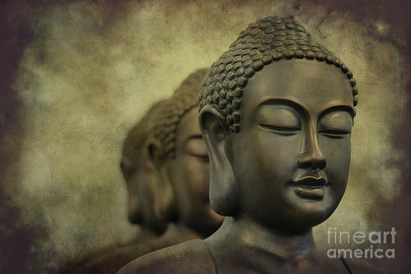 Photograph - Buddha Bronze by Clare Bambers