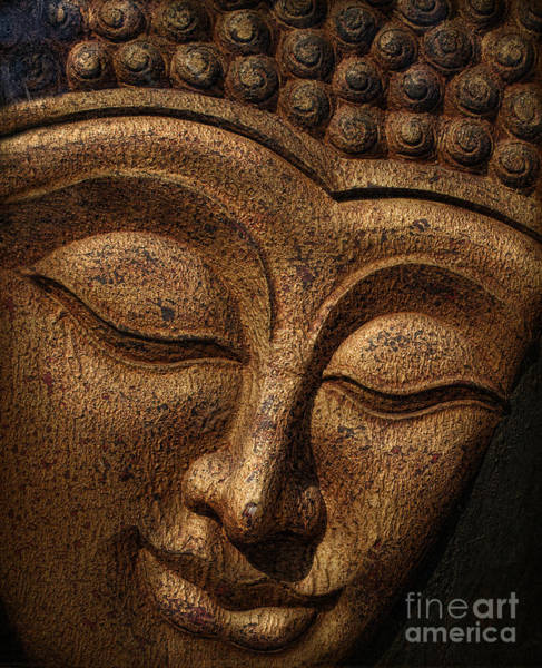 Thai Wall Art - Photograph - Buddha by Elena Nosyreva