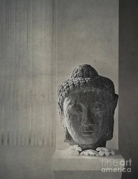 Photograph - Buddha by Hans Janssen