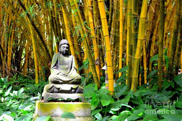Allerton Garden Photograph - Buddha In The Bamboo Forest by Mary Deal