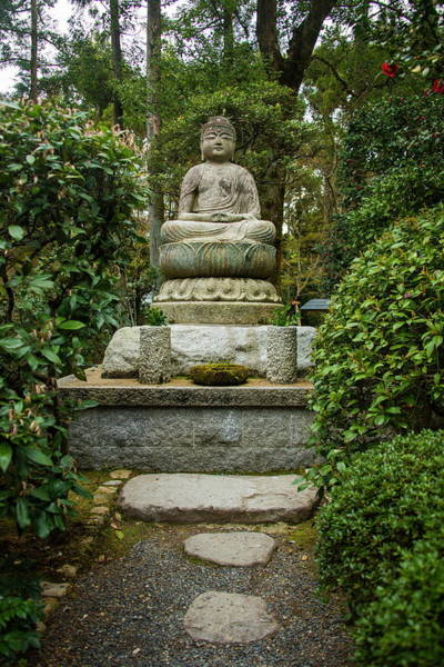 Statue Photograph - Buddha Statue In The Ryoan-ji Temple by Michael Runkel / Robertharding