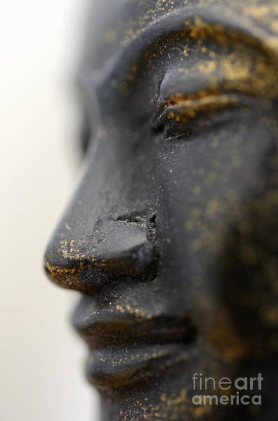 Wall Art - Photograph - Buddha Statue Profile by Sami Sarkis
