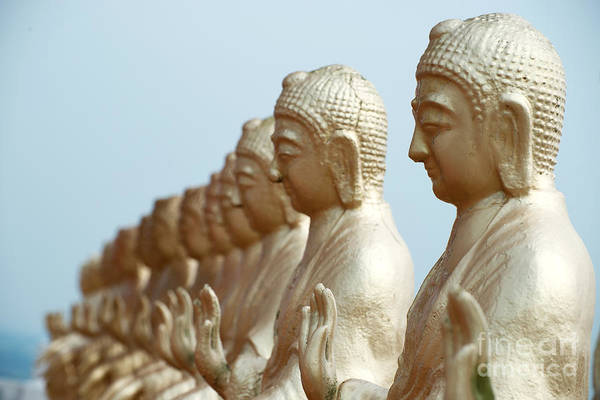 Photograph - Buddha Statues Under Blue Sky by Yew Kwang