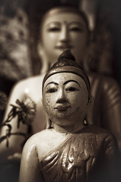 Photograph - Buddhas by Maria Heyens