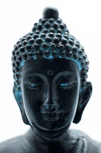 Photograph - Buddha's Portrait by Fabrizio Troiani