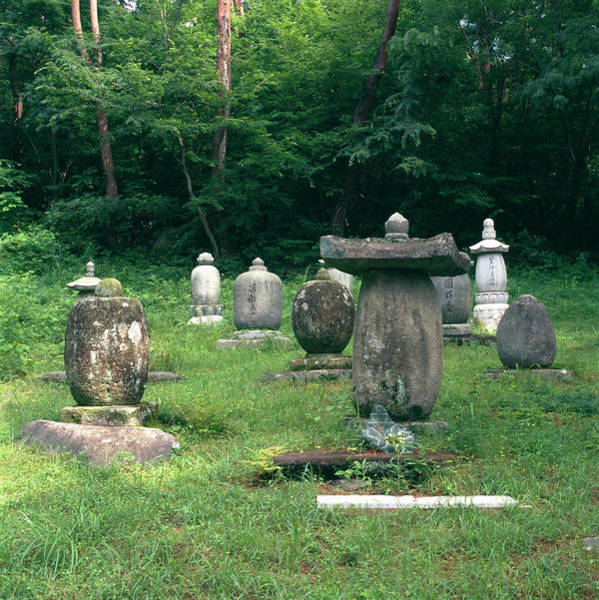 Buddhist Temple Wall Art - Photograph - Buddhist Graveyard by Mark De Fraeye/science Photo Library