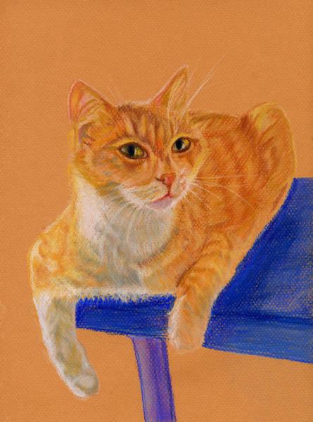 Orange Tabby Drawing - Buddy by Angela Courtney
