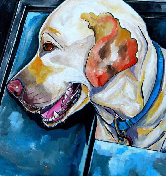 Painting - Buddy by Patti Schermerhorn