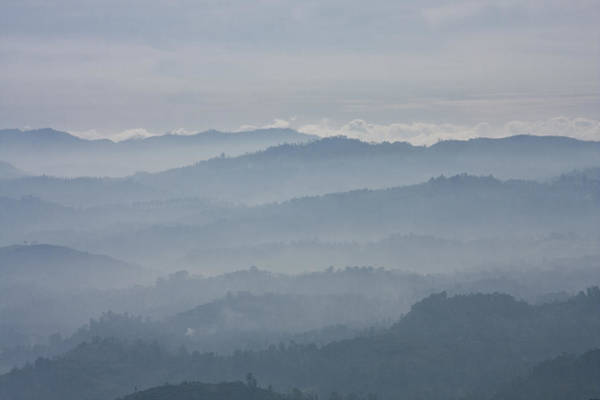 Photograph - Blue Morning by Maria Heyens