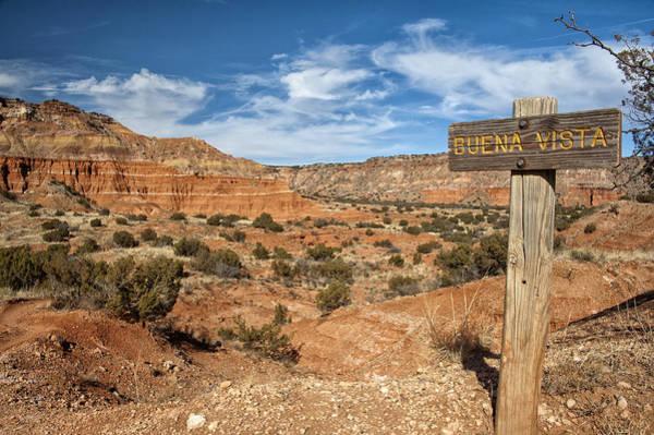 Photograph - Buena Vista by Melany Sarafis