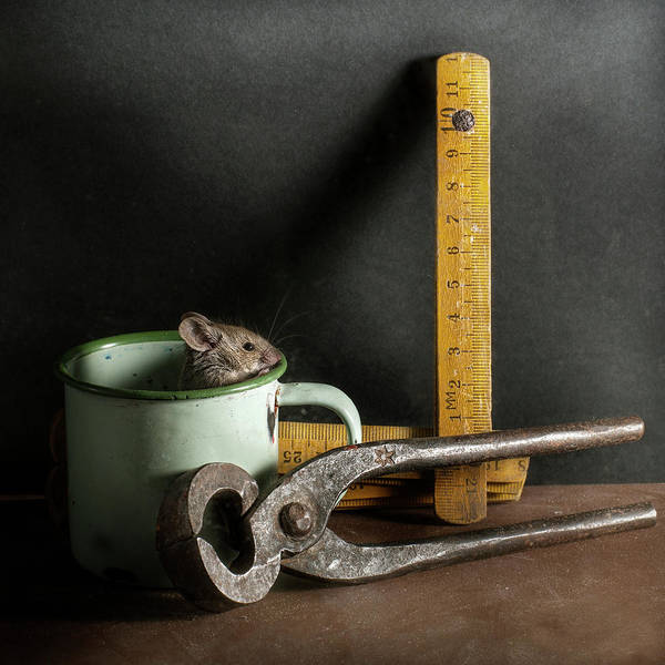 Mug Photograph - Buenos Días by Silversaltphoto.j.senosiain