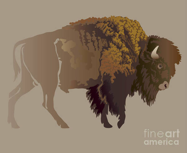 Hunt Digital Art - Buffalo. Hand-drawn Illustration by Imagewriter