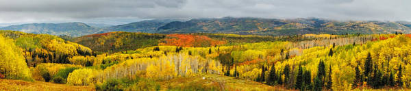 Wall Art - Photograph - Buffalo Pass Steamboat Springs Co by Teri Virbickis